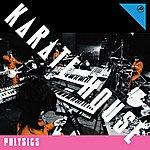 Polysics Karate House
