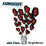 The Longcut Idiot Check - You Got the Love