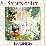 Karunesh Secrets Of Life