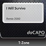 T-Zone I Will Survive (Remix 2000)