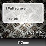 T-Zone I Will Survive (7 inch Edit)