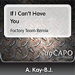 A. Kay-B.J. If I Can't Have You (Factory Team Remix)