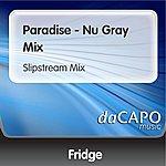 Fridge Paradise - Nu Gray Mix (Slipstream Mix)