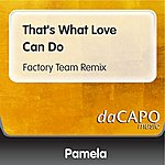 Pamela That's What Love Can Do (Factory Team Remix)