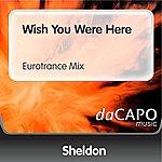 Sheldon Wish You Were Here (Eurotrance Mix)