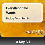 A. Kay-B.J. Everything She Wants (Factory Team Remix) (Feat. Alex Perry)