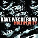 Dave Weckl Multiplicity