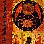 Wellwater Conspiracy Declaration of Conformity