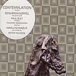 Benjamin Koppel Contemplation