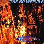 The Bo-Weevils Burn