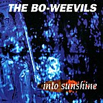 The Bo-Weevils Into Sunshine
