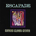 Escapade Citrus Cloud Cover