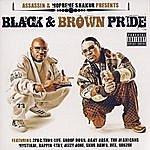 Assassin Black & Brown Pride