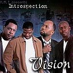Vision Introspection