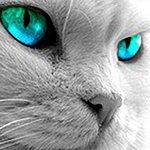 Tina Eyes On U