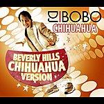 DJ Bobo Chihuahua - Beverly Hills Chihuahua Version