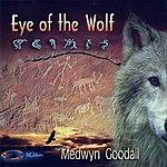 Medwyn Goodall Eye Of The Wolf