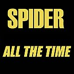 Spider All The Time