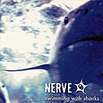 Nerve Swimming With Sharks