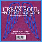 Urban Soul Orchestra What Do I Gotta Do