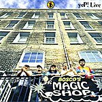 Yep! Live: Bosco's Magic Shop