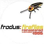Frodus Fireflies
