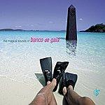 Banco De Gaia The Magical Sounds of Banco de Gaia