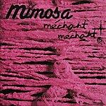 Mimosa Méchant Méchant