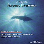 William Goldstein The Great White Shark - Mekong: a Tribute to Jacques Cousteau
