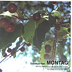 Montag Goodbye Fear EP
