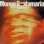 Mongo Santamaria Skins