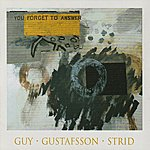 Mats Gustafsson You Forget To Answer