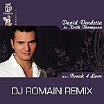 David Vendetta Break 4 Love - DJ Romain Remix