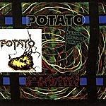 Potato Punky, Reggae, Party