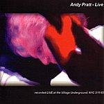 Andy Pratt Live at the Village Underground