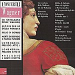 NBC Symphony Orchestra Wagner: Selection from Concerto No. 12