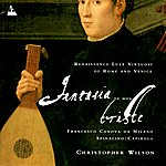 Christopher Wilson Fantasia de Mon Triste - Renaissance Lute Virtuosi of Rome and Venice