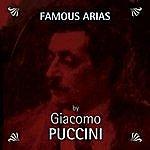 Ensemble L'Arco Famous Arias by Giacomo Puccini