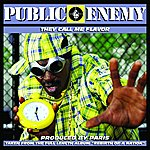 Public Enemy They Call Me Flavor