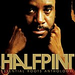 Half Pint Essential Roots Anthology