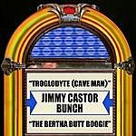 The Jimmy Castor Bunch Troglodyte (Cave Man) / The Bertha Butt Boogie