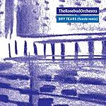 Rosebud Dry Tears (Funcle remix)