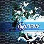 Seven New