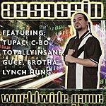 Assassin Assassin Worldwide Game