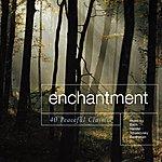 Crimson Enchantment - 40 Peaceful Classics