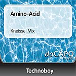 Technoboy Amino-Acid (Kneissel Mix)