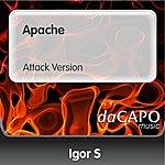 Igor S Apache (Attack Version)