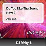 D.J. Ricky T Do You Like The Sound Now ? (Acid Mix)