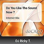 D.J. Ricky T Do You Like The Sound Now ? (Internet Mix)