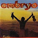 Embryo Rache